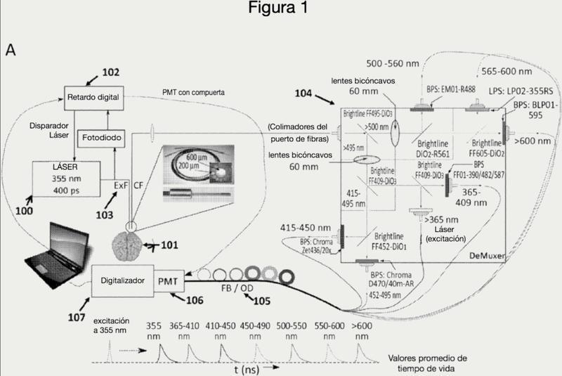 Sistemas de espectroscopía de fluorescencia inducida por láser de resolución en el tiempo y sus usos.