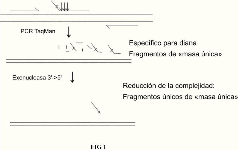 Identificación de ácidos nucleicos diana por escisión de sonda basada en estructura.