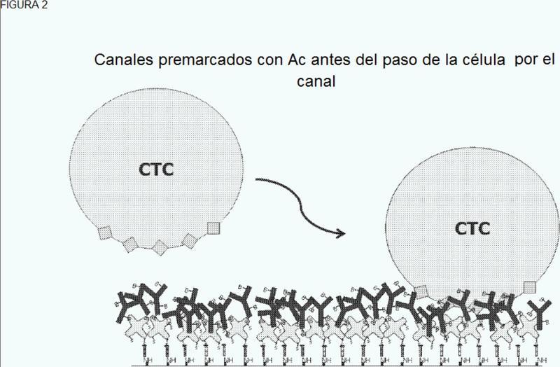 Dispositivos y métodos de captura y análisis de células.