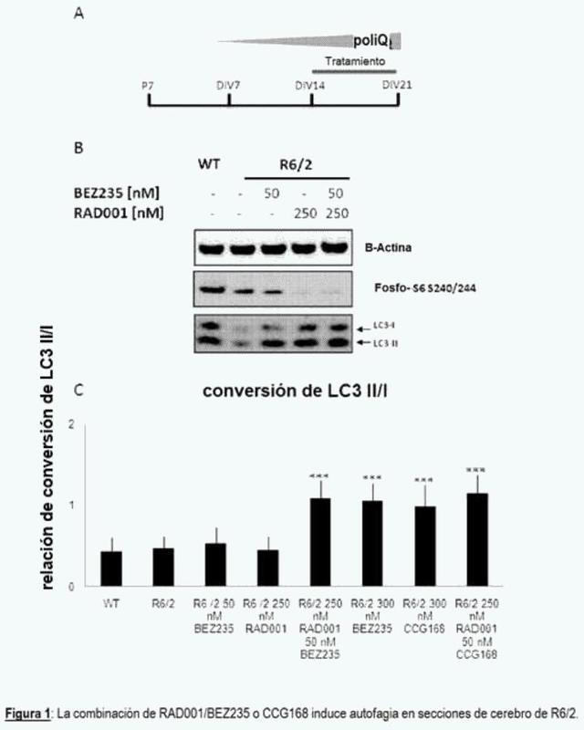 Combinaciones de agentes terapéuticos para uso en el tratamiento de enfermedades neurodegenerativas.