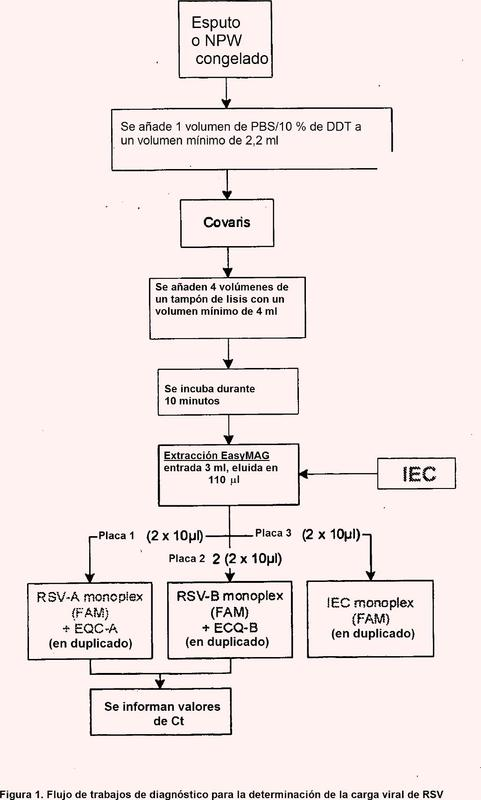 Ensayo de detección de la carga viral con el virus sincitial respiratorio (RSV).