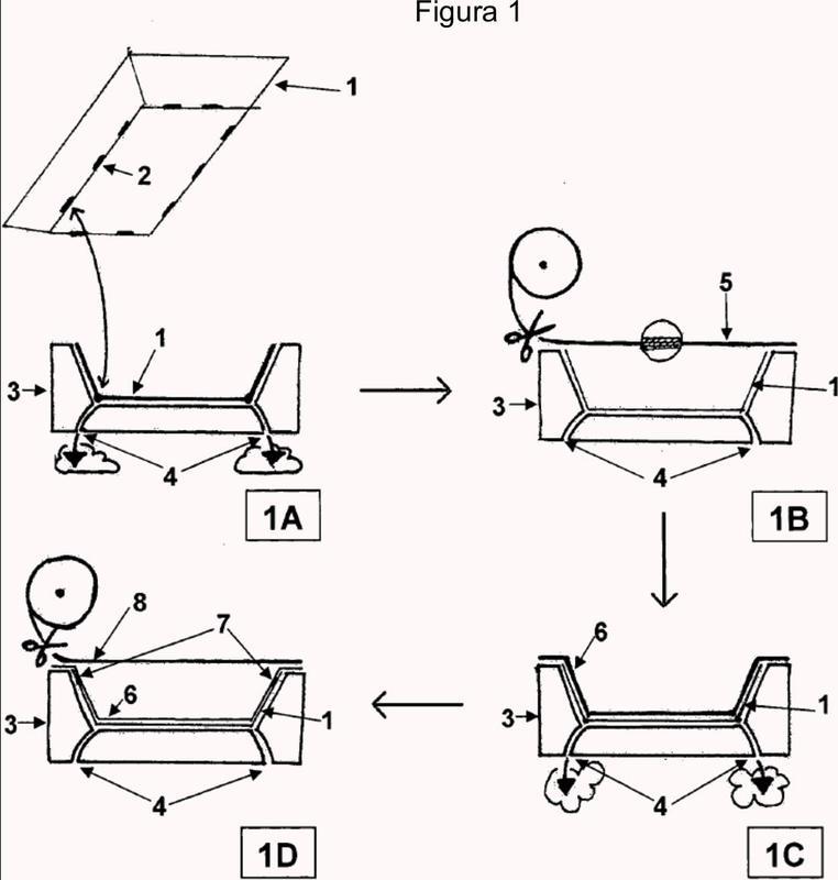 Sistema de envasado que comprende una estructura de cartón.