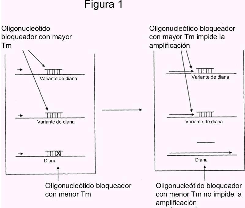 Supresión de la amplificación usando un oligonucleótido y una polimerasa que carece significativamente de actividad exonucleasa 5''-3''.