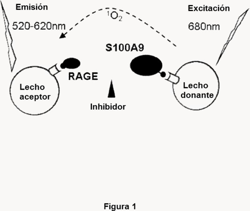 Nuevos compuestos útiles como inhibidores de S100.