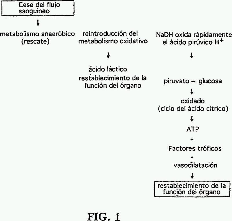 Disolución y procedimiento para la reanimación y reparación de tejido dañado isquémicamente.