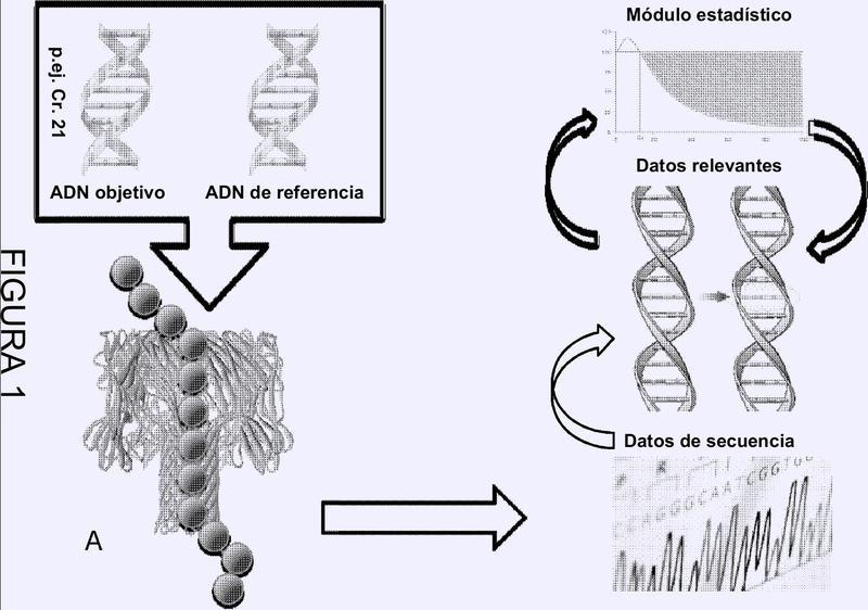 Detección de diferencias genéticas cuantitativas.