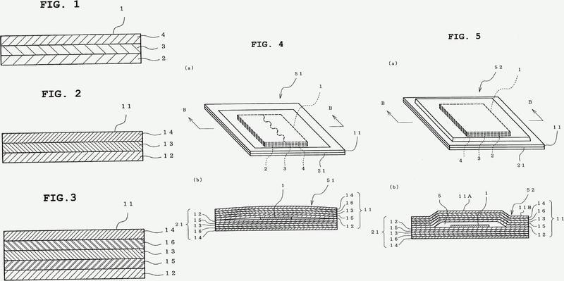Estructura de envasado de parche.