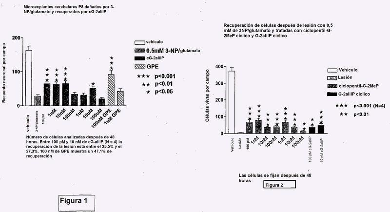 Compuestos neuroprotectores bicíclicos y composiciones farmacéuticas que los contienen.