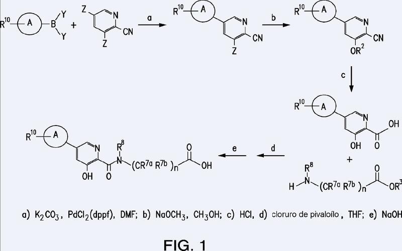 Derivados de ácido 5-((halofenil)-3-hidroxi-piridin-2-il)-carboxílico como intermedios para la preparación de sus ácidos carbonilamino alcanoicos, ésteres y amidas.