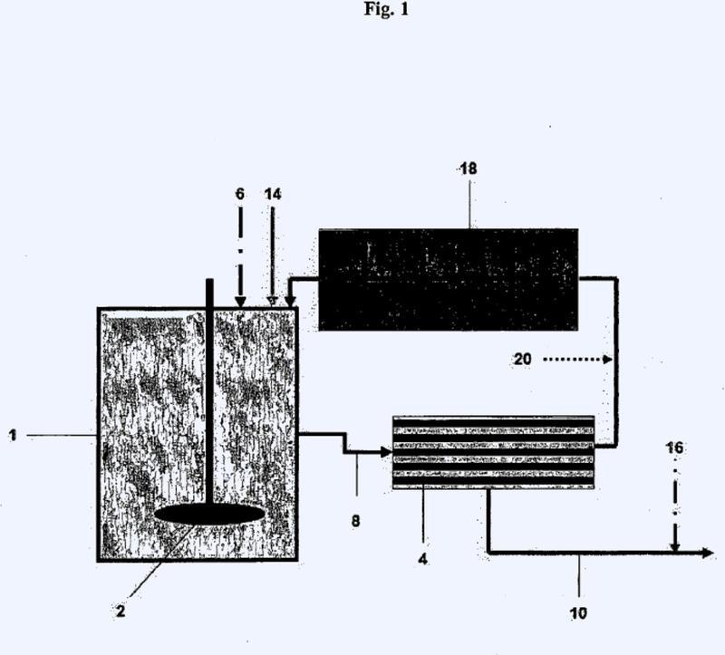 Proceso para la preparación de una solución acuosa que comprende al menos un carbonato de hidrógeno alcalinotérreo y su uso.