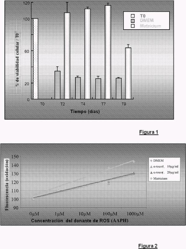 Composiciones inyectables de uso intraarticular que asocian un agente de viscosuplementación y un medio de crecimiento de fibroblastos.