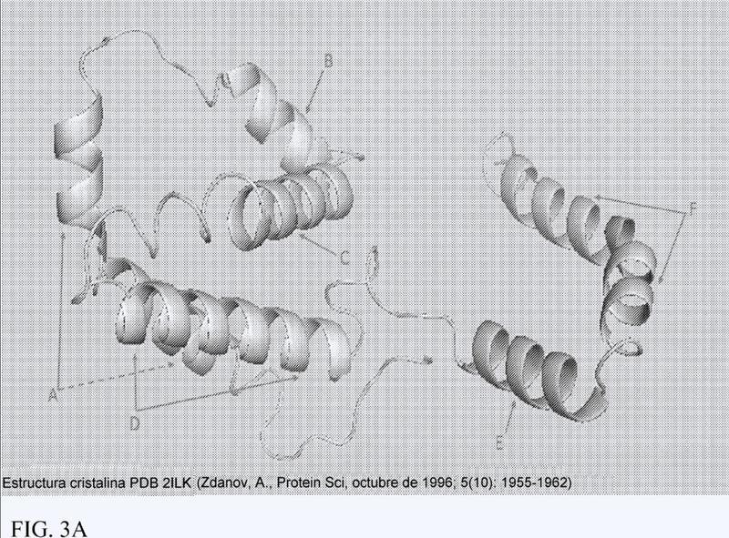 Procedimiento de evaluación de la identidad y la estabilidad de proteínas.