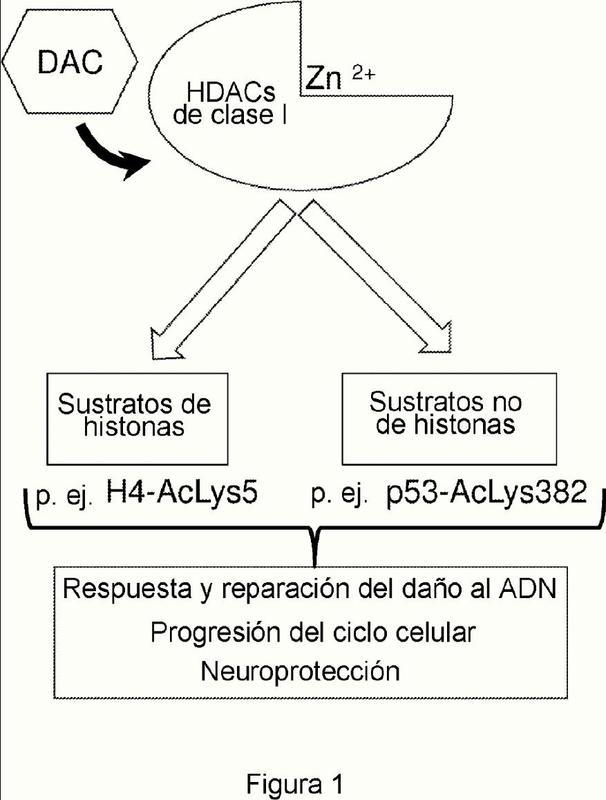 Activadores de histona desacetilasas de clase I (HDACS), y usos de los mismos.