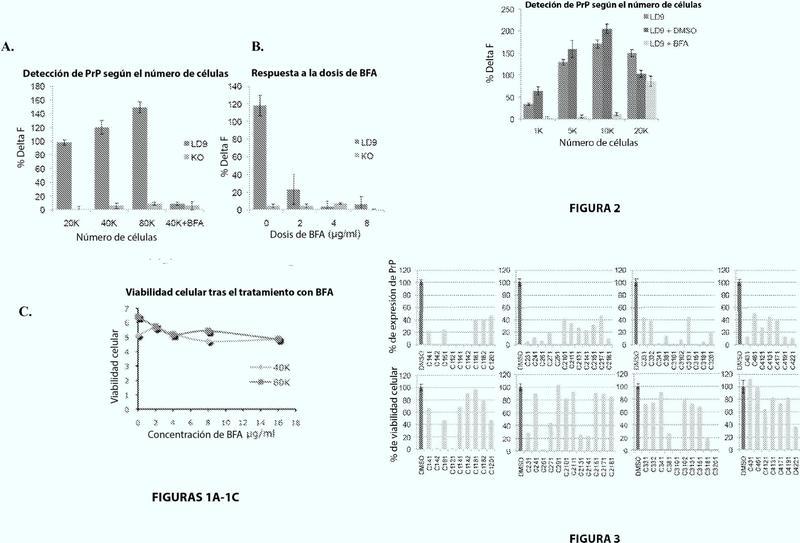 Cribado de alto rendimiento para compuestos que modulan los niveles de macromoléculas celulares.