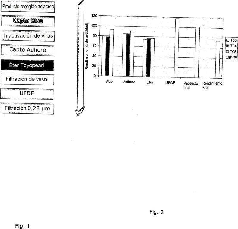 Purificación de galactocerebrósido beta-galactosidasa humana recombinante (galchr).