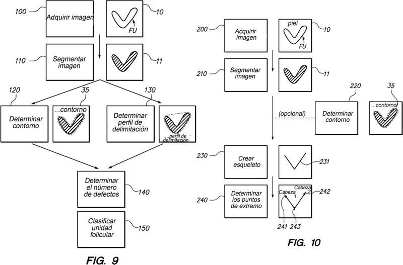 Sistema y método para clasificar unidades foliculares.