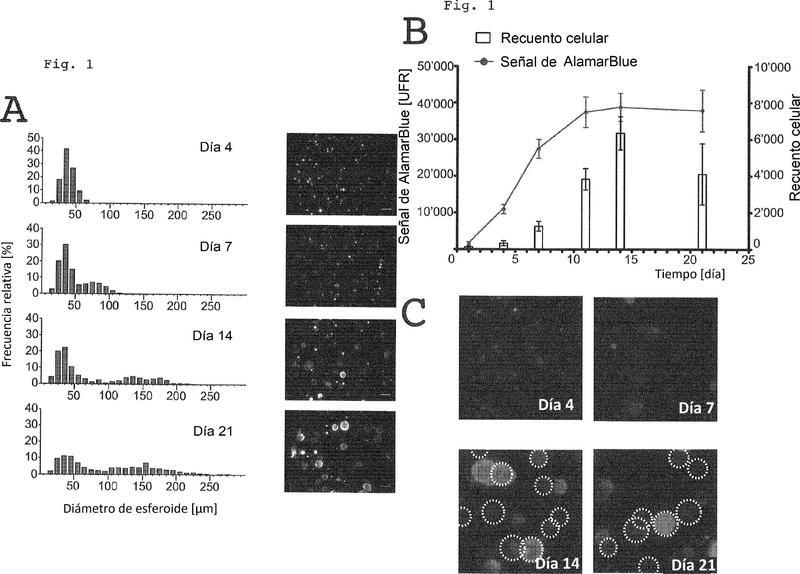 Método para un ensayo de selección de fármacos basado en células y uso del mismo.