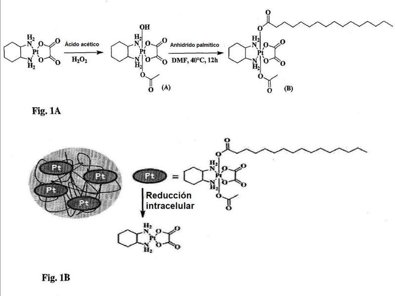 Derivados de Pt (IV) y nanotransportadores que los comprenden.