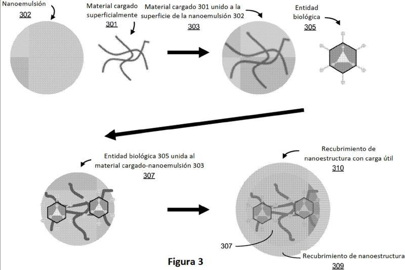 Recubrimientos a nanoescala para la encapsulación de entidades biológicas.