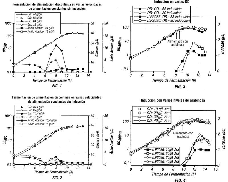 Procedimiento de fermentación de alimentación discontinua de alta densidad celular para producir proteínas recombinantes.