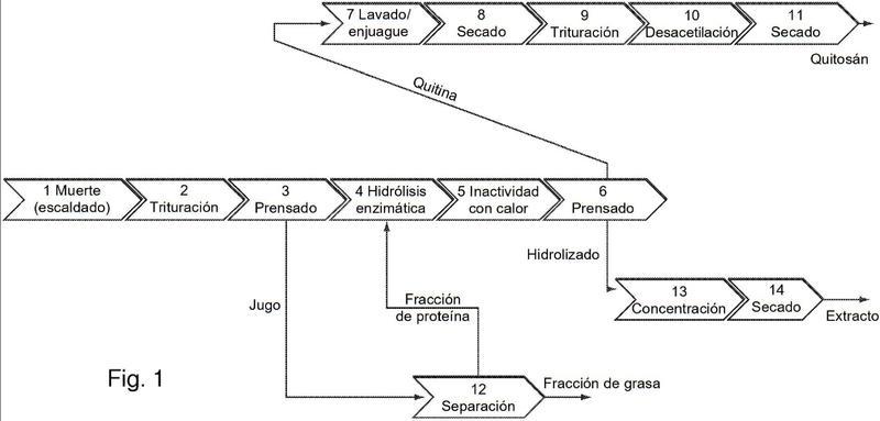 Quitina, hidrolizado y procedimiento para la producción de uno o más productos de interés a partir de insectos mediante hidrólisis enzimática.