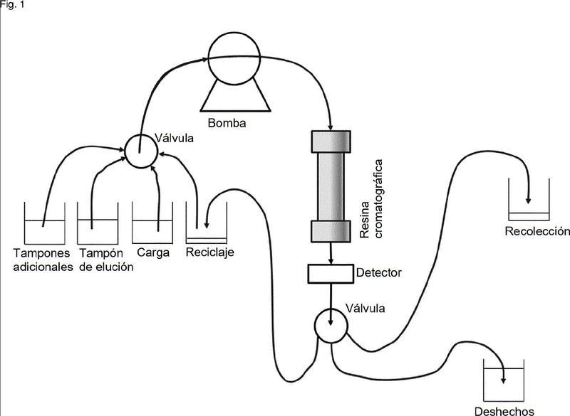 Purificación de proteínas.
