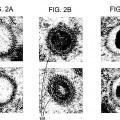 Ilustración 2 de Identificación y clasificación de partículas víricas en micrografías electrónicas texturizada.