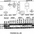 Ilustración 2 de Anomalías de la expresión de microARN en tumores pancreáticos endocrinos y acinares.