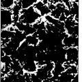 Ilustración 2 de Chorreado de implantes metálicos con óxido de titanio.