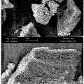 Ilustración 3 de Material en forma de partículas que comprende un compuesto que contiene calcio y un alcohol de azúcar.