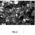 Ilustración 2 de Titanio nanoestructural comercialmente puro para biomedicina y método para elaborar una varilla del mismo material.