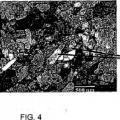 Ilustración 4 de Titanio nanoestructural comercialmente puro para biomedicina y método para elaborar una varilla del mismo material.