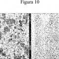 Ilustración 1 de Factor de permisividad celular para virus, y usos del mismo.