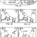 Ilustración 1 de Meganucleasas diseñadas racionalmente con especificidad de secuencia y afinidad de unión a ADN alteradas.
