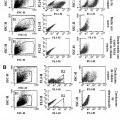 Ilustración 1 de Métodos para identificar, purificar y enriquecer células madre o inmaduras de inicio de cáncer a partir de tumores y uso de las mismas.