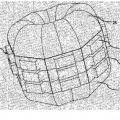 Ilustración 6 de Array aplicador de campo electromagnético con sensores de campo integrantes para la corrección implícita del acoplamiento mutuo y la desadaptación.